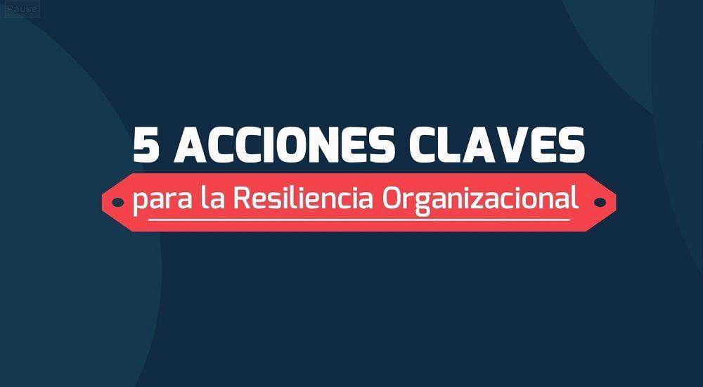 resiliencia organilizacional web